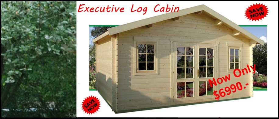 Executive-Sale