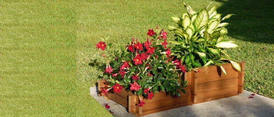 Organic Gardening Planter Box