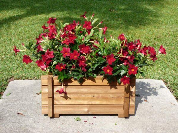 PlanterBox Solo2